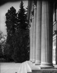 Columns of Shaw Memorial Hall