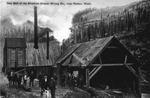 Skookum Copper Mining Co. Sawmill, near Roslyn