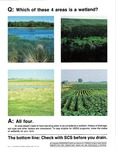 Which of These Four Areas is a Wetland? by United States Natural Resources Conservation Service