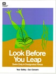 Look Before You Leap by United States Army Corps of Engineers