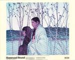 Homeward Bound: A New Deal for American Art