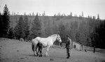 Man, Horse, Colt
