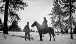 Horse, Two Men