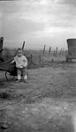 Child, Wagon, Car