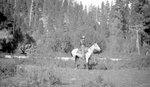 Rider, Forest