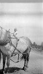Child, Horse