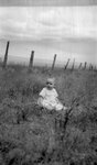 Child, Grass, Fence