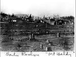 """Mt. Baldy,"" Roslyn, Washington"