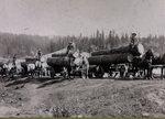 Northwestern Improvement Company (NWI) sawmill