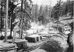 Cascade Mining Company